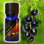 Mystic Juice Blackcurrant